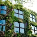Paris Becomes One of the Most Garden-Friendly Cities in the World - EcoWatch
