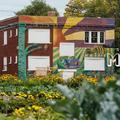 Turning Derelict Buildings into an Urban Farm in Detroit - Munchies