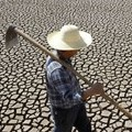 UN: Global agriculture needs a 'profound transformation' to fight climate change and protect food security - The Washington Post