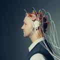 We've Got Human Intelligence All Wrong | BBC Future