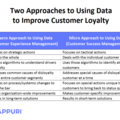 The Complementary Roles Of Customer Experience Management And Customer Success Management