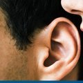 How to be a Good Listener: The Experts' Guide | Life and Style | The Guardian