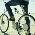 「自行車在線」建立直播平台並推廣大型賽事