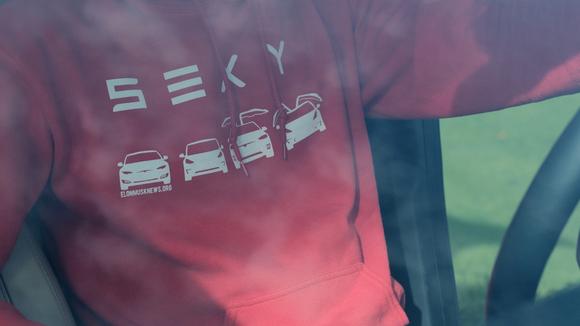 S3XY Tesla