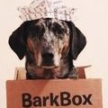 BarkBox Twitter Bot
