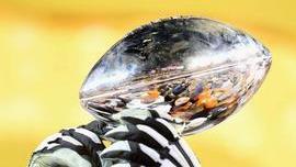 Super Bowl LI Complete Ad Special Report