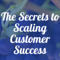 Pulse Local SV | The Secrets To Scaling Customer Success | February 2, 2017