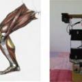 [簡] 雙足式機器人是如何實現的?