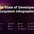 The State of Developer Ecosystem 2017