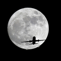 When you complain about these airlines on Twitter, they listen | Financial Post