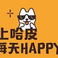 PK 抖音,騰訊推新短影音 App「哈皮」
