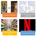 Practical Deep Learning for Coders 2019