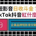 TikTok 抖音生態介紹:哪些人適合經營?又該如何設計 15 秒腳本?